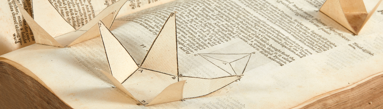 Bibliothèque Thomas Vroom, Histoire de la perspective